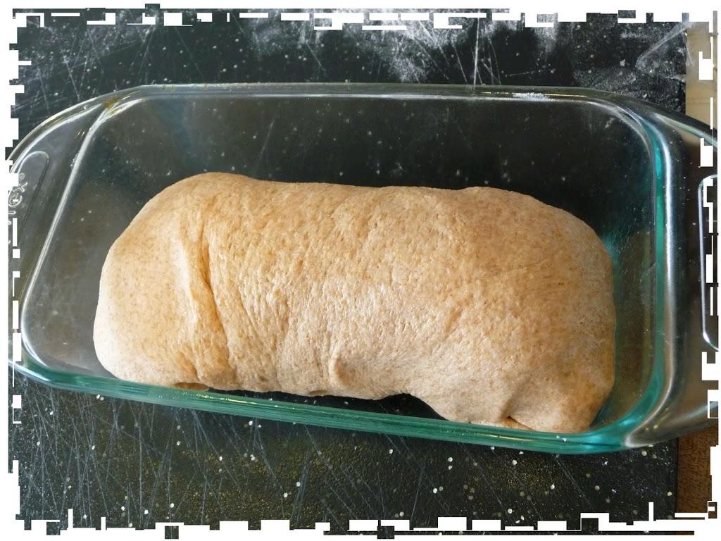 wheat-bread-252811-2529ed1